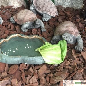 Englischer Antiksteinguss: 012. Small Look up Tortoise, h 14 cm