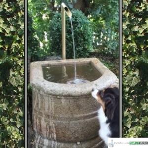 Antiker Barockbrunnen mit Sichtbaren Wasserlauf
