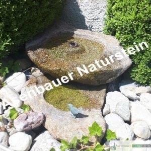 Bild 011, Naturbecken mit Vogeltränke